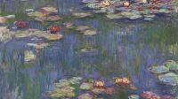Claude Monet les Nymphéas  à la Fondation Beyeler