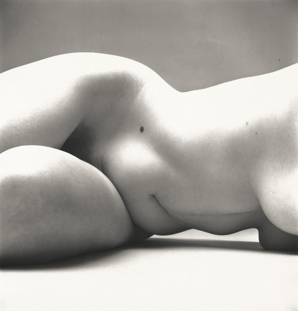 Irving Penn, Nude No. 72, New York, 1949-1950 - Exposition Irving Penn au Grand Palais