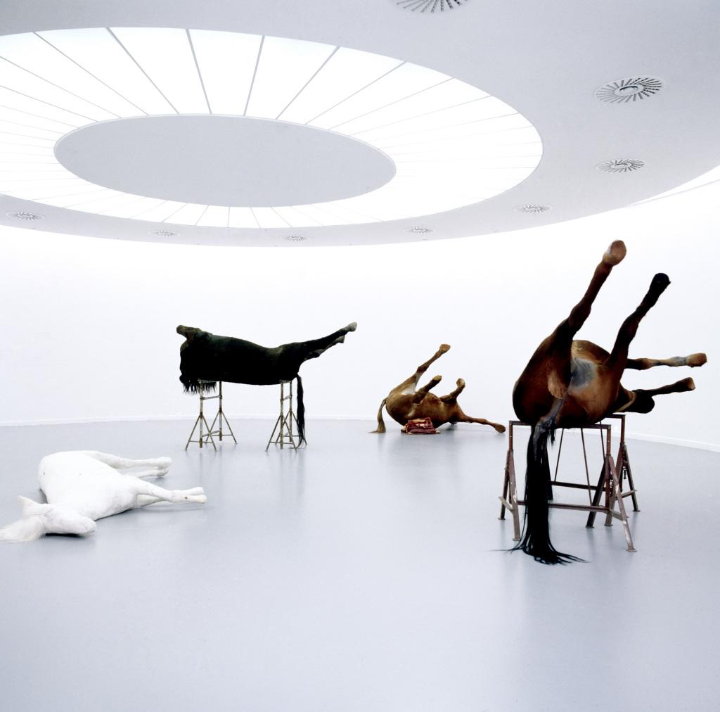 Berlinde de Bruyckere, In Flanders Fields, 2000 - Exposition A poils et a Plume, L'odysee des animaux II au Musee de Flandre de Cassel