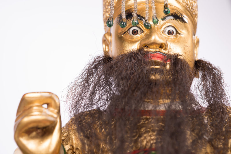 Venenum, un monde empoisonné au Musée des Confluences jusqu'au 7 janvier 2018