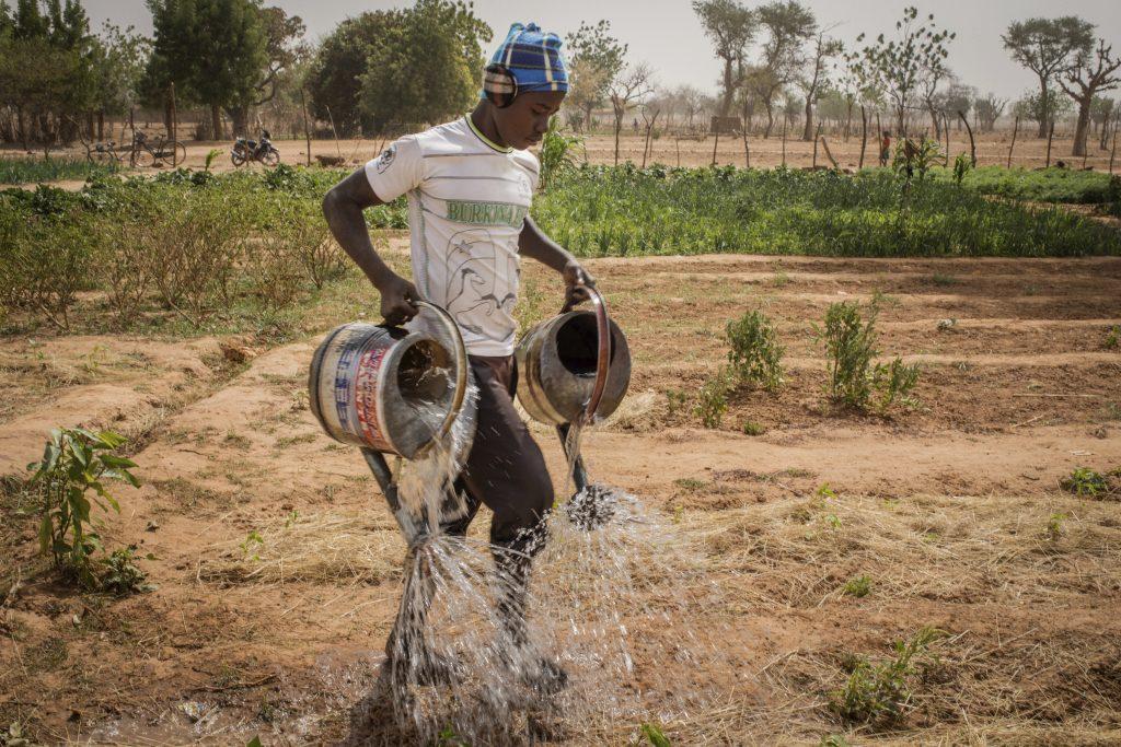 Agroecologie au Sahel. - Exposition Empreinte au Pavillon de l'Eau