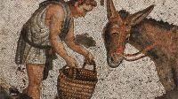 L'Ane d'or ou les Metamorphoses d'Apulee , Mosaique byzantine,  Ve siecle, Istanbul