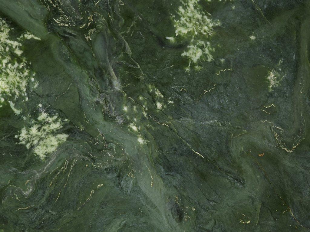 Jade, detail - Pierre Sacree des Maoris au Musee du Quai Branly - Jacques Chirac