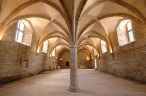 Abbaye de Cluny - Journées Européennes du Patrimoine 2017