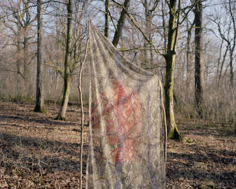 Sylvain Gouraud, Série de 15 photographies, 2017, Animer le paysage, Musée de la chasse et de la nature