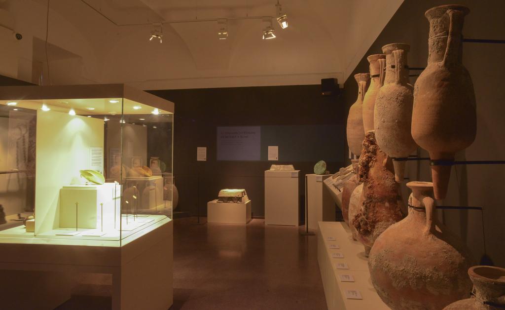 Vue de l'exposition Secrets d'épaves, 50 ans d'archéologie sous-marine en Corse au Musée de Bastia (2)