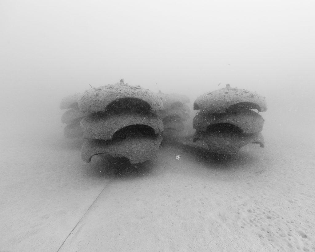 Nicolas Floc'h, Structure productive, récif artificiel, P2A, -10 m, Cagnes-sur-Mer, 2014