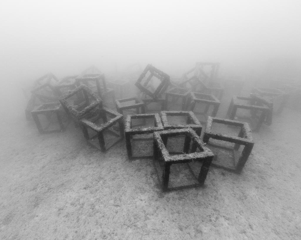 Nicolas Floc'h, Structure productive, récif artificiel, Cubes, 2014