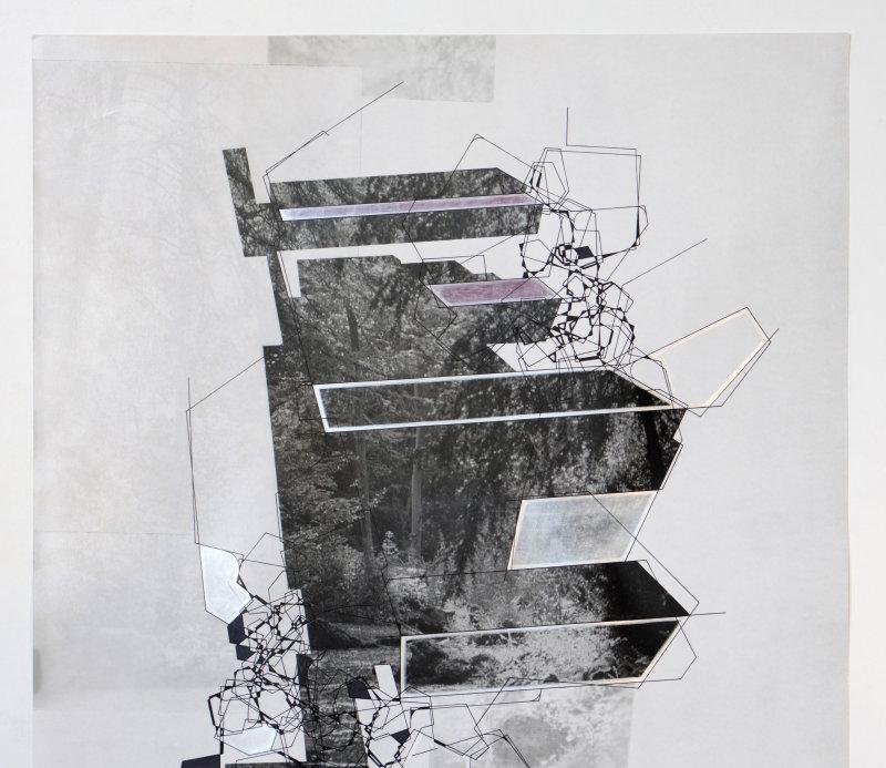 Avec ses séries de jardins idéaux, réalisées par collage en s'appuyant sur des images synthétisées à l'ordinateur, Aki Lumi questionne le réel et l'artefact.