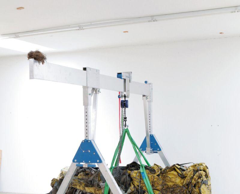 Hans Schabus, petit palais, FIAC 2017, on site, expo in the city