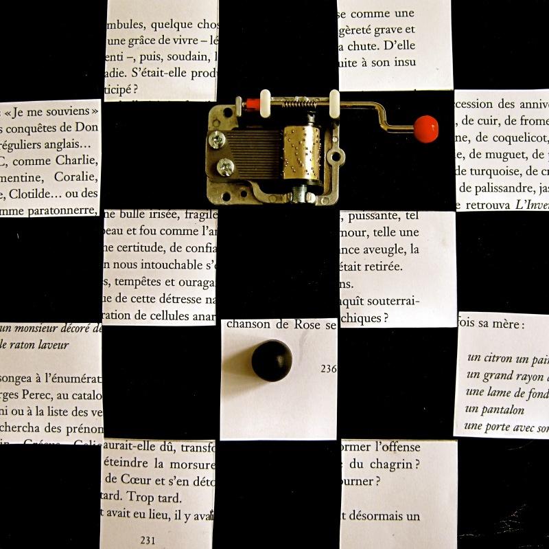 Écrivaine, psychanalyste et photographe, Lydia Flem manie l'art de combattre le mal par l'imagination. Ici elle compose un puzzle offert au regard de celui qui voudra bien lui redonner un sens.