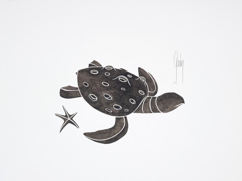 Alain Godon, Tortue et étoile de mer, 2016