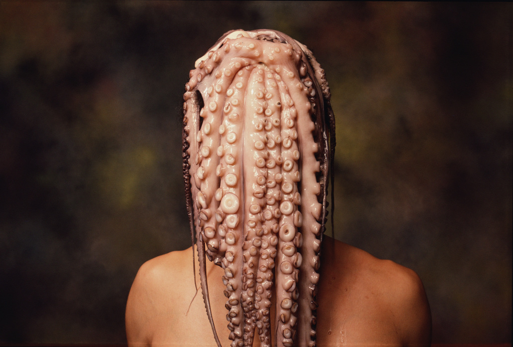 Andres Serrano, Octopus Head (Early Works), 1985