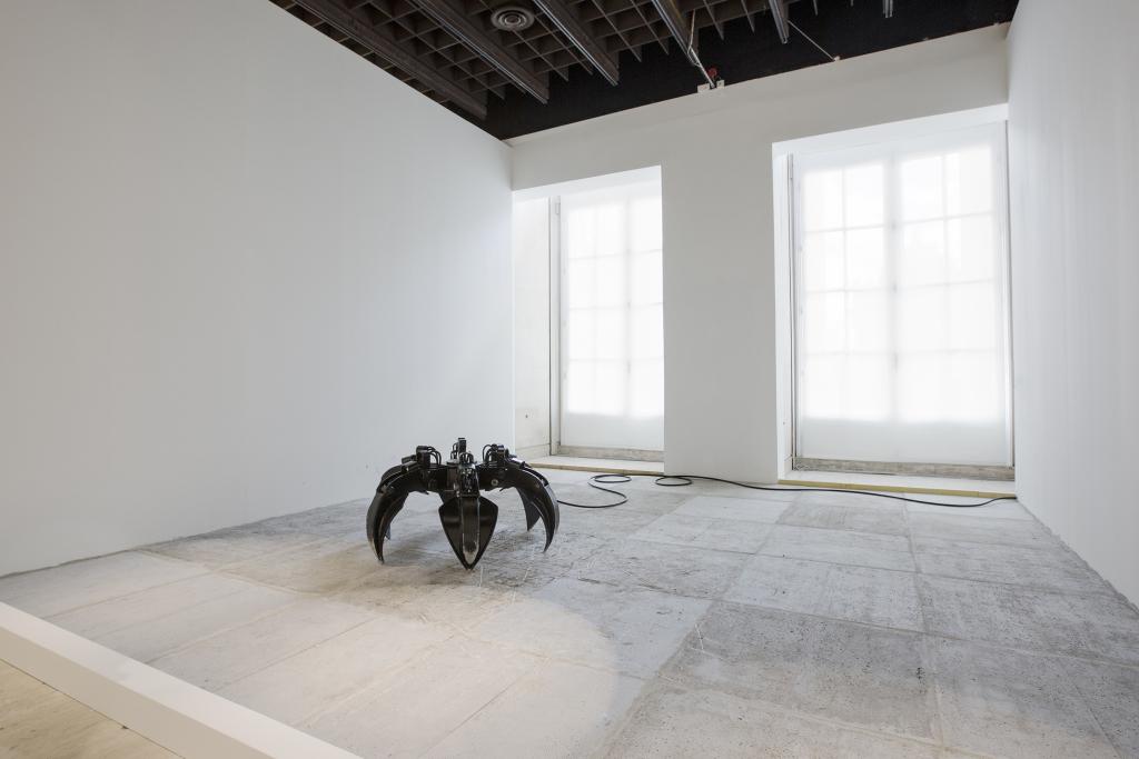 Sassolino, Untitled, 2006-2016