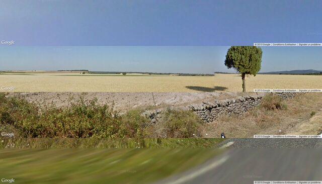 Julien Levesque, Street views patchwork capture - - Exposition La Belle Vie Numérique à la Fondation EDF