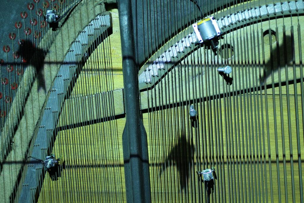 Piano Migrations, Kathy Hinde - Biennale Nemo au Cent Quatre