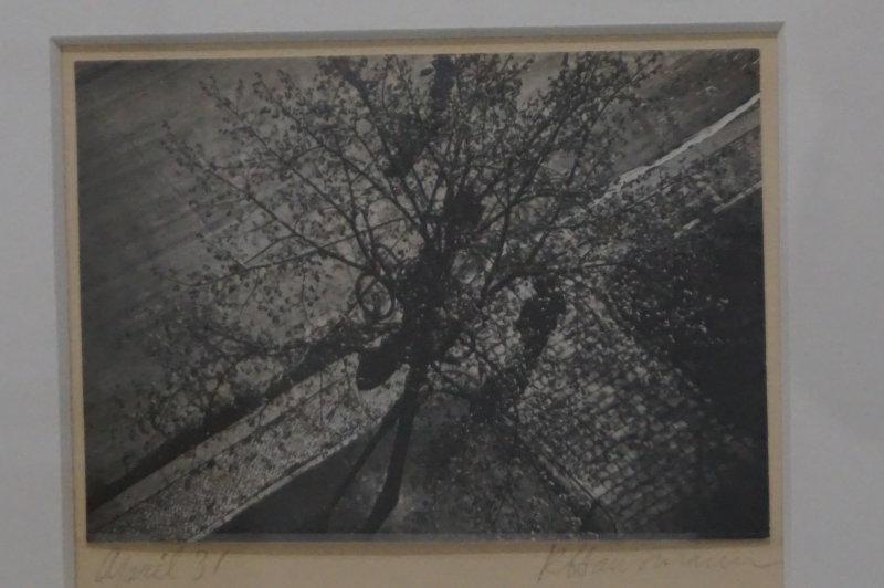 Vue de l'exposition Raoul Hausmann - Jeu de Paume (13)