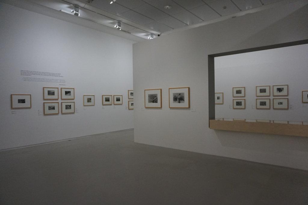 Vue de l'exposition Raoul Hausmann - Jeu de Paume (25)