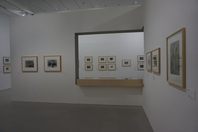 Vue de l'exposition Raoul Hausmann - Jeu de Paume (26)