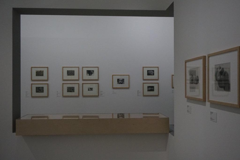 Vue de l'exposition Raoul Hausmann - Jeu de Paume (27)