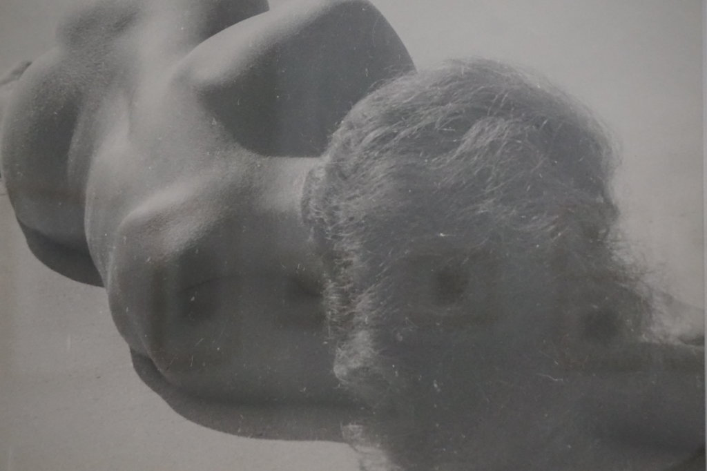 Vue de l'exposition Raoul Hausmann - Jeu de Paume (28)