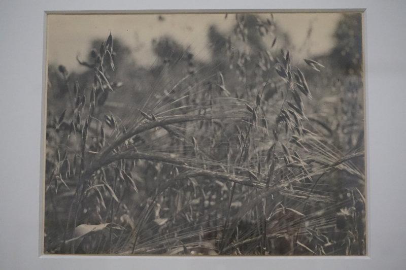 Vue de l'exposition Raoul Hausmann - Jeu de Paume (35)