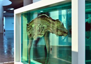 damien hirst, expo in the city, mother and child divided