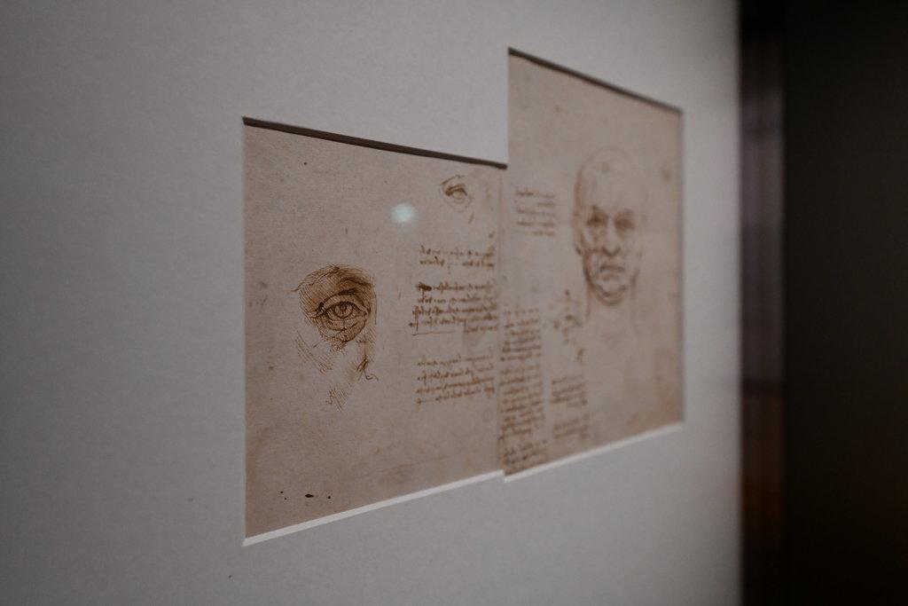 Vue exposition Léonard de Vinci - Louvre - Paris (17)