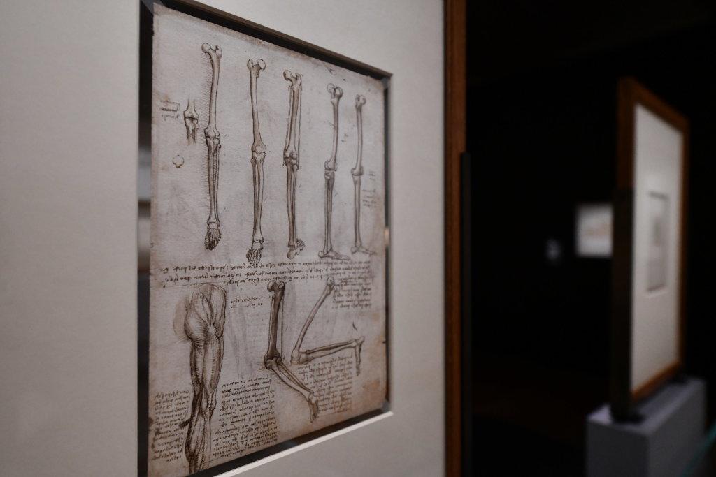 Vue exposition Léonard de Vinci - Louvre - Paris (2)