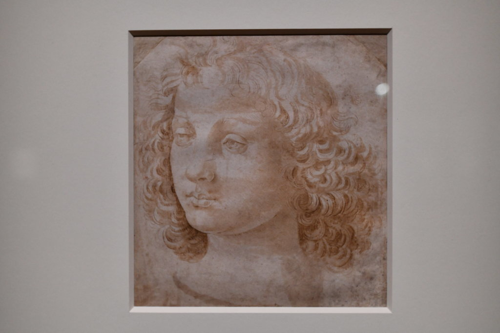 Vue exposition Léonard de Vinci - Louvre - Paris (31)