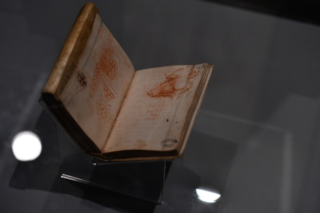 Vue exposition Léonard de Vinci - Louvre - Paris (35)