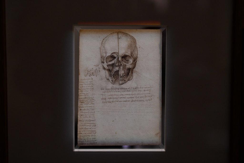Vue exposition Léonard de Vinci - Louvre - Paris (36)