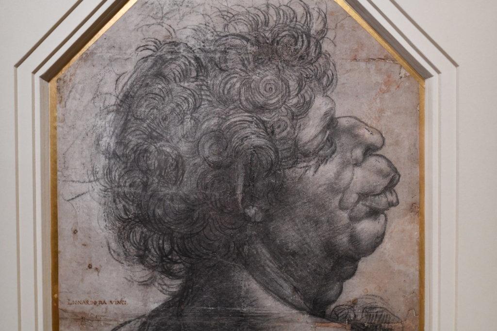 Vue exposition Léonard de Vinci - Louvre - Paris (4)