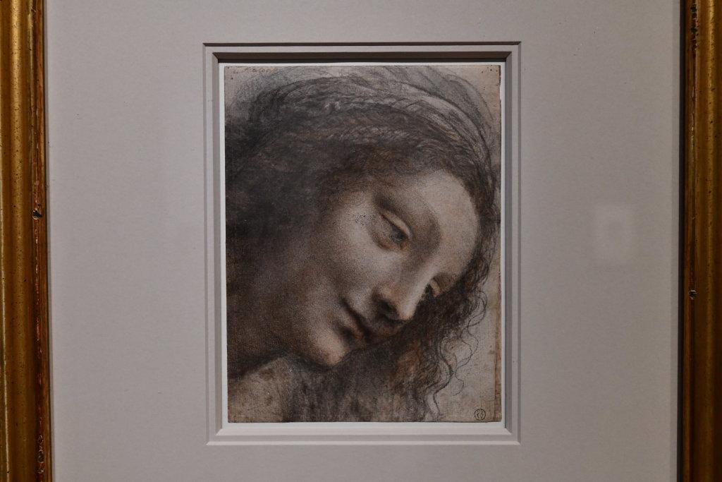 Vue exposition Léonard de Vinci - Louvre - Paris (60)